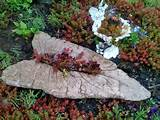 Hypertufa Leaves, Garden Art