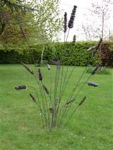 garden art is always welcome at garden beet suzie gutteridge sent me a