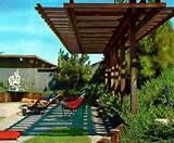 60s book mid century modern garden design plants lawns rock roses