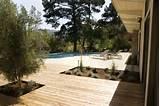 Mid Century Modern- Garden Rehab modern landscape