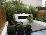 sophisticated modern town garden from John Gilbert