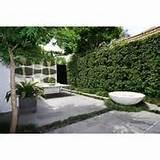 modern garden designs modern outdoor courtyard garden landscape ...