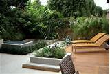 Comely Backyard Landscape Design Pictures Innovation Hot Home Backyard ...