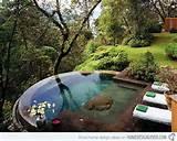 pool landscape 4