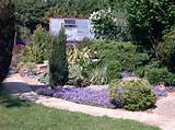 DIY-landscaping-1024x767.jpg
