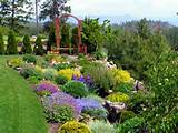 Free Landscaping Ideas, Tips, Tricks And Landscaping Products Looking ...