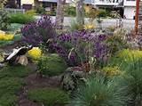 landscape design ideas plans free landscaping ideas