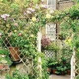 arch trellis create a pretty archway with trellising training scented