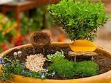 ... Garden Designs, Fairy Gardens Defining New Trends in Container