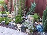 dscf3059 rocks for succulent garden