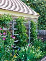 in your garden by adding a trellis or low fence behind every planting
