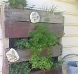 wooden pallet vertical herb garden ideas small patio area ideas