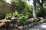 Tropical Landscape by Belle Terre Landscapes