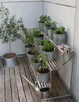 Modern Container Garden Stand Herb