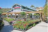 Artistic Armstrong Garden Center San Diego and armstrong garden center ...