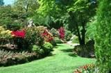 free landscape design plan