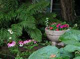shady garden ideas picture inspirational shady garden edging ideas ...