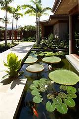gm construction decks patios zen garden koi pond garden pond