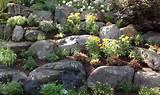 rock-garden-boulders-1400x833
