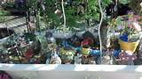 western garden nursery carries a great selection of garden gifts and