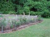 garden fence ideas small garden design ideas video garden fence