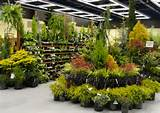 garden center ideas and i like their display fixture so easy to see ...
