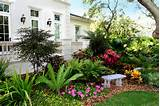 florida landscaping ideas for landscape tropical design ideas