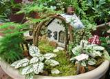 ... gardening fairy gardens have come a long way grown in container they