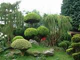 small japanese garden plants small japanese garden design ideas