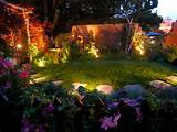 use solar garden lights to brighten up your yard