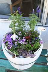 Container Gardens Are Ideal Fairy Garden Habitats. Photo © Anna Day ...