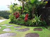 landscaping ideas for your garden tropical landscaping garden design ...