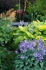 shade garden ideas books inspiration garden design photography