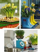 garden decorating ideas easy beauty to your life and garden with bulbs ...