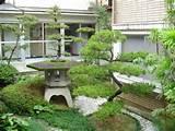 Japanese Mini-Garden.jpg