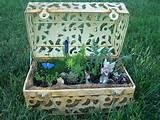 LOTS of container fairy gardens - Garden Junk Forum - GardenWeb