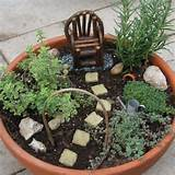 Fairy container garden with herbs