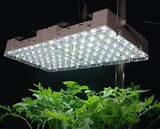 large image 14w indoor led grow lights panel ac90 240v