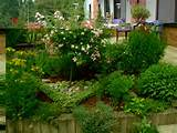 design ideas - garden information center herb garden design ideas herb ...
