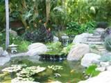 pat brodie landscape design tropical landscape