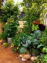 beautiful herb garden design ideas 05 jpg
