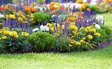 landscaping 02 19 2012 4 comments mike lenard the art of landscaping ...