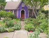 lucinda hutson art garden austin tx mann a1667 tif 1 of 1 the garden ...