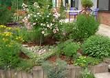 Home » Herb Gardening » Designing an Herb Garden