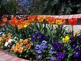 garden landscape flowers and flower garden design pictures furniture