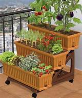 patio vegetable garden ideas - patio garden [499x600] | FileSize: 128 ...