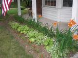 transform tuesday front yard flower beds