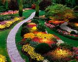 ideas in beautiful small garden design with colorful flowers and stone