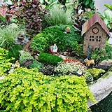 fairy garden at better homes gardens