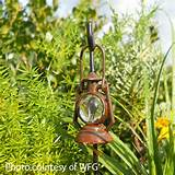 fairy rustic lantern